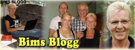 Bims Blogg - Gamla