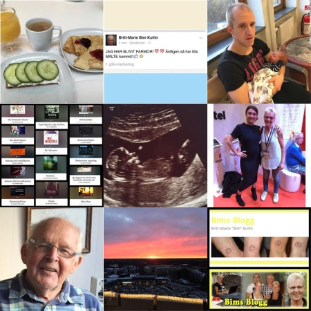 Top Nine of Insta - 2015